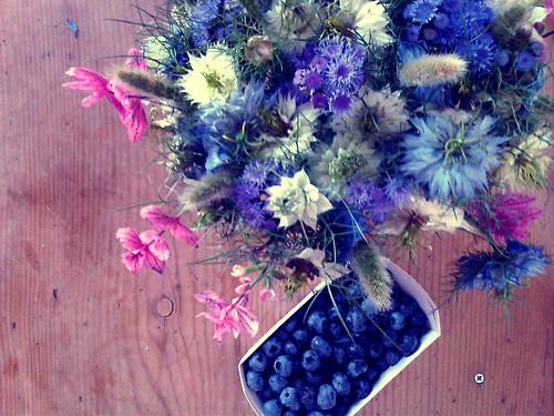 Blueberry von Anja Mikula