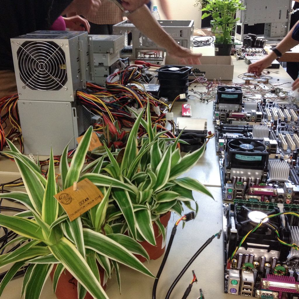 Zerlegte Rechner Foto: Carolin Clausnitzer